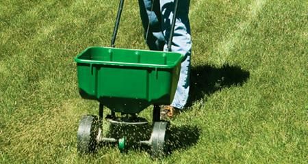 Your 2019 Lawn Care Road Map